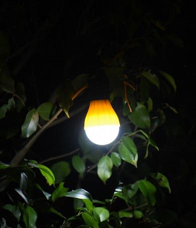 ライト使用例