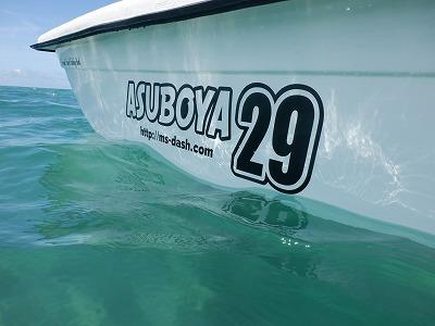 ASUBOYA29