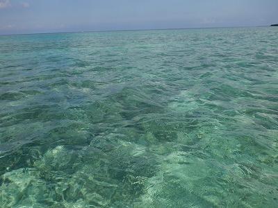 海はキレイだなぁ~